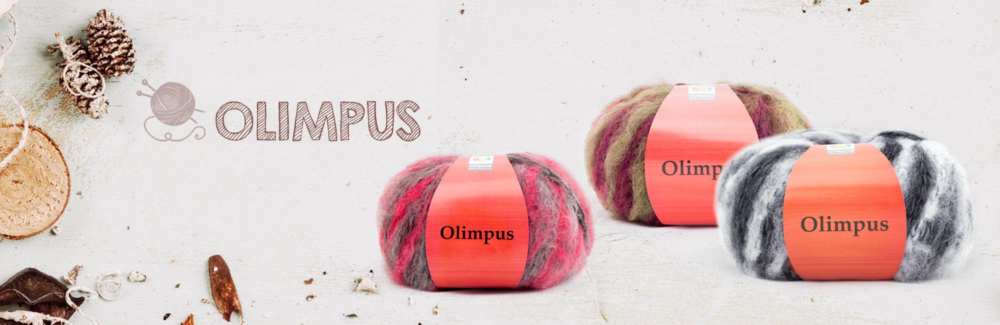 slide_olimpus_2000x650px